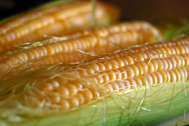 ข้าวโพดหวาน Sweet Corn