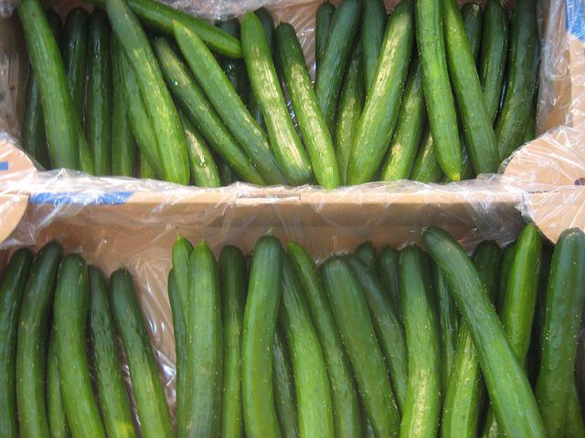 แตงกวาญี่ปุ่น Japanese Cucumber, Suhyo